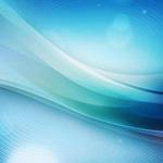【クリプトラクト】ステラ(進化・幻獣契約)の評価と刻印